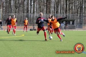 © FC Mecklenburg-Schwerin